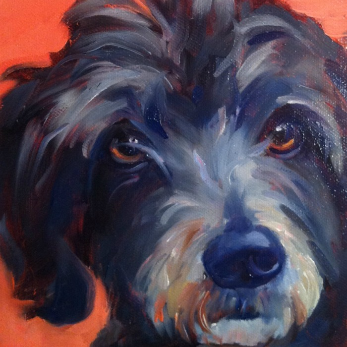 """The Best Dog in the World #7, oil on ray mar, 6x6"" original fine art by Darlene Young"