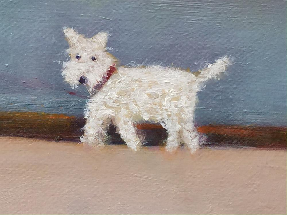 """""""Curly dog"""" original fine art by Chrissie Richards"""