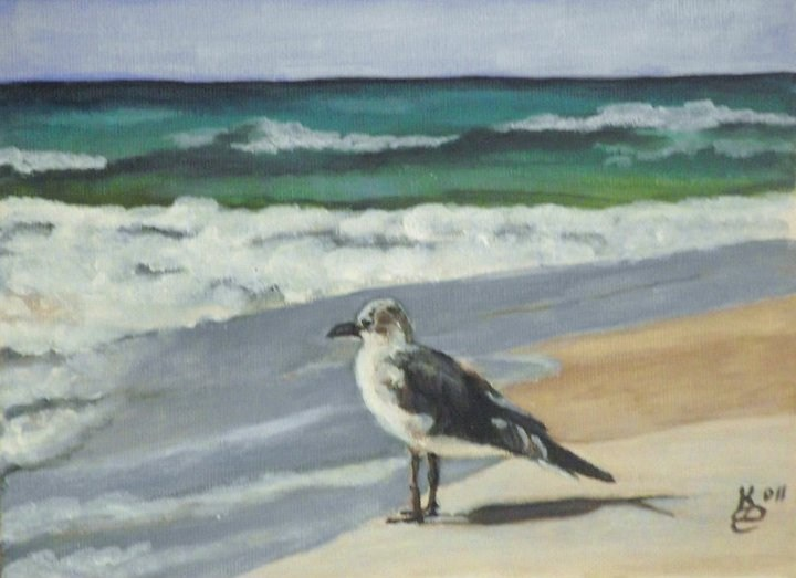 """Seagull"" original fine art by Kim Selig"