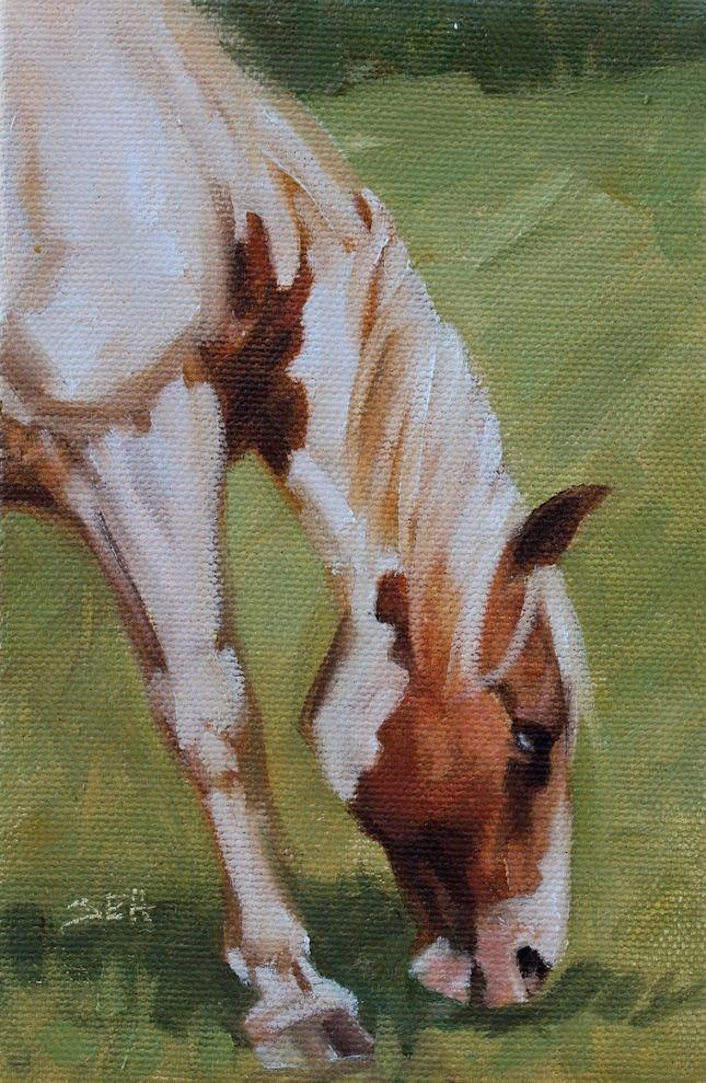 """Meadow VII"" original fine art by Susan Ashmore"