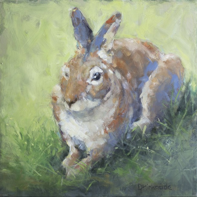 """Spring Rabbit - Oil Painting by Deb Kirkeeide"" original fine art by Deb Kirkeeide"