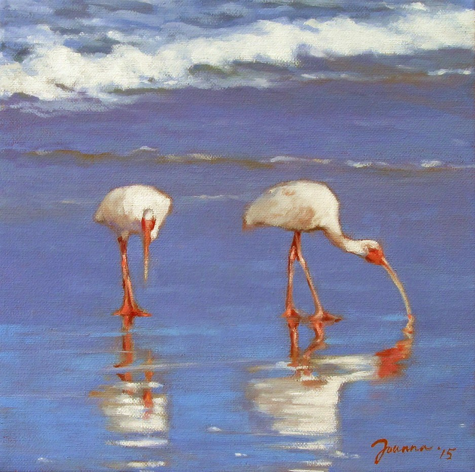 """Ibis On The Beach"" original fine art by Joanna Bingham"
