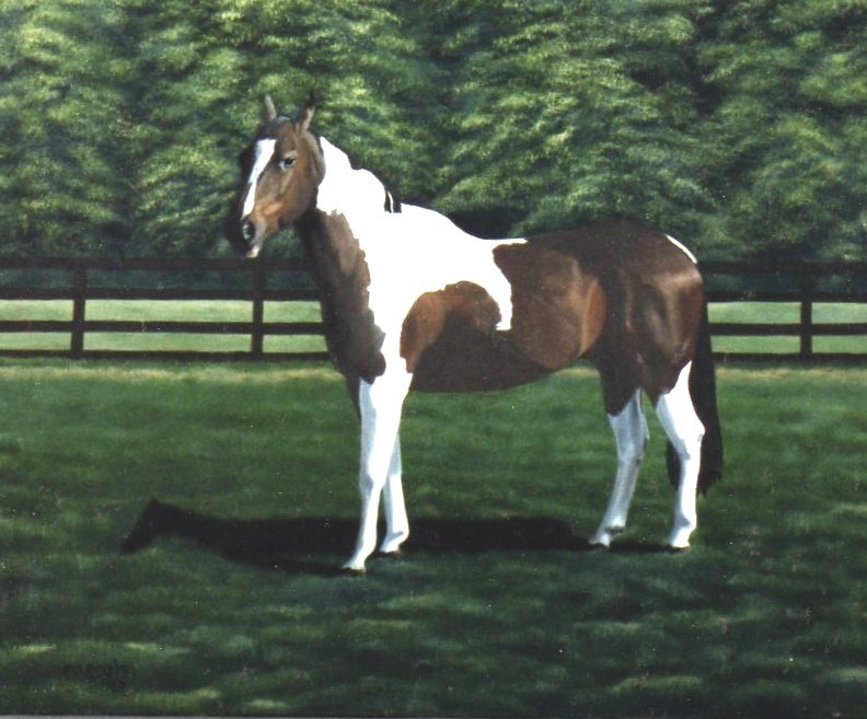 """Mike's Horse"" original fine art by John Marcum"