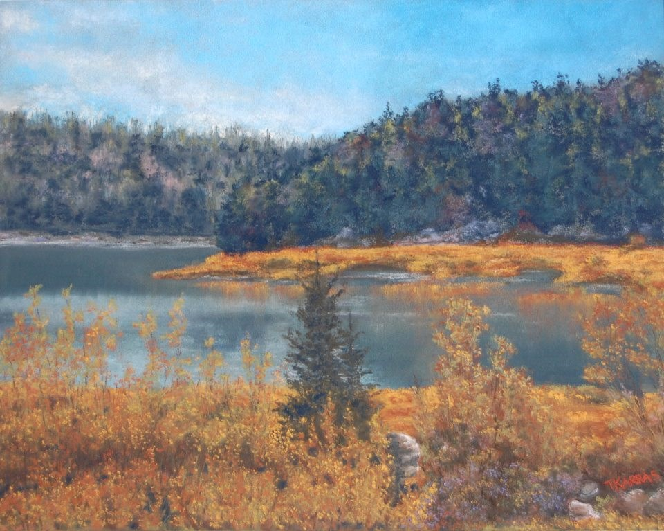 """Wyoming Wilderness"" original fine art by Christina Karras"