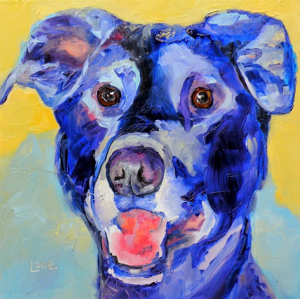 """BOBO 75/101 OF 101 PET PORTRAITS IN 101 DAYS © SAUNDRA LANE GALLOWAY"" original fine art by Saundra Lane Galloway"