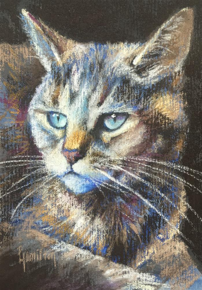 """Tabby"" original fine art by Pamela Hamilton"