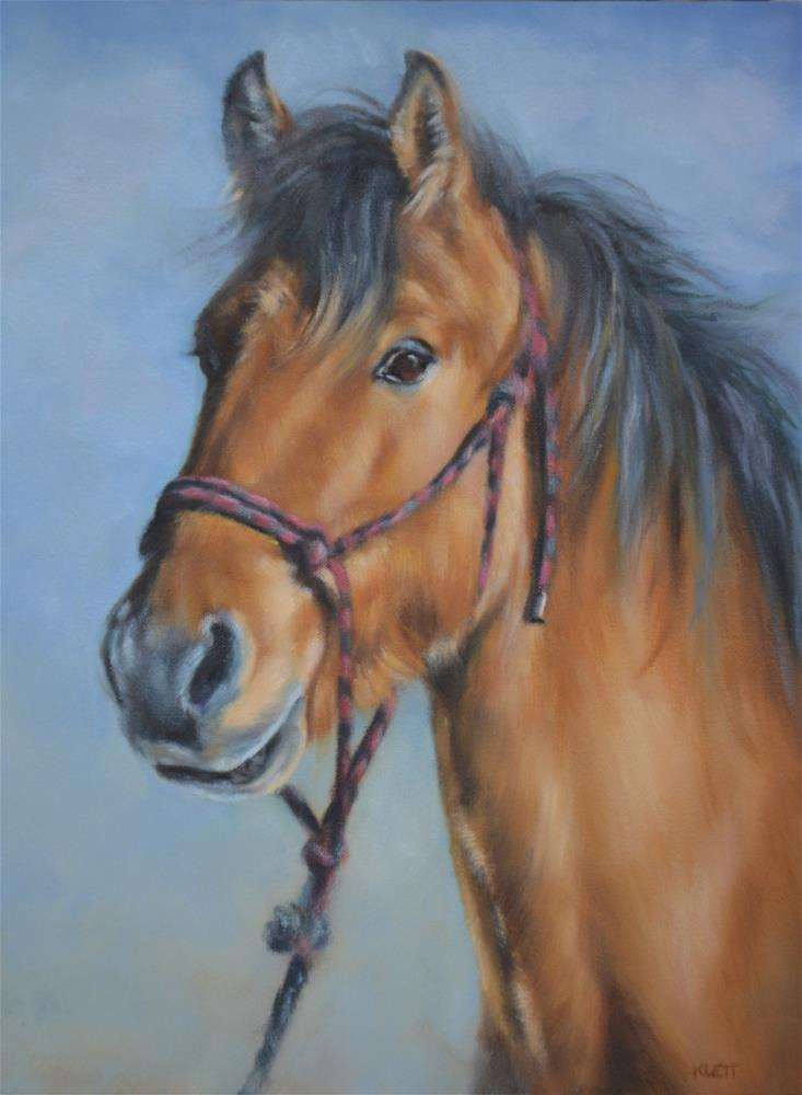 """Kiger Mustang"" original fine art by Tracy Klett"