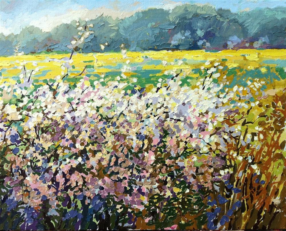 """Blossom and oilseed rape"" original fine art by Haidee-Jo Summers ROI"