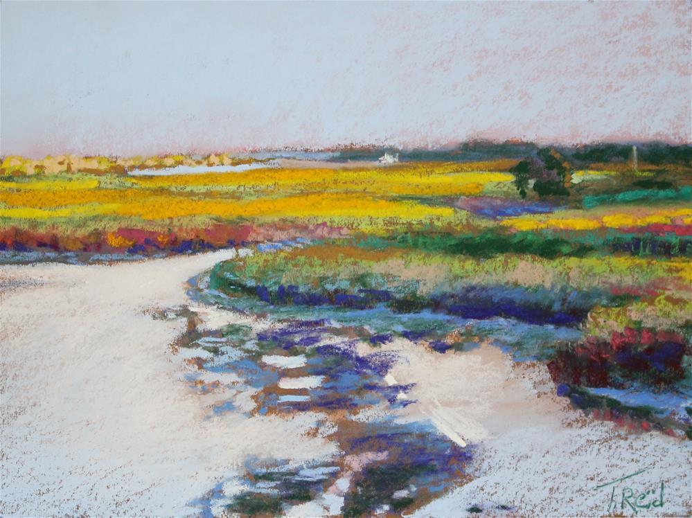 """Evening Marsh"" original fine art by Toby Reid"