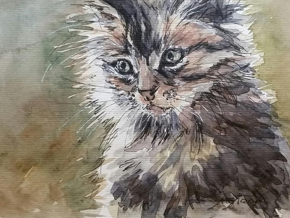 """Kitty"" original fine art by Gabriella DeLamater"