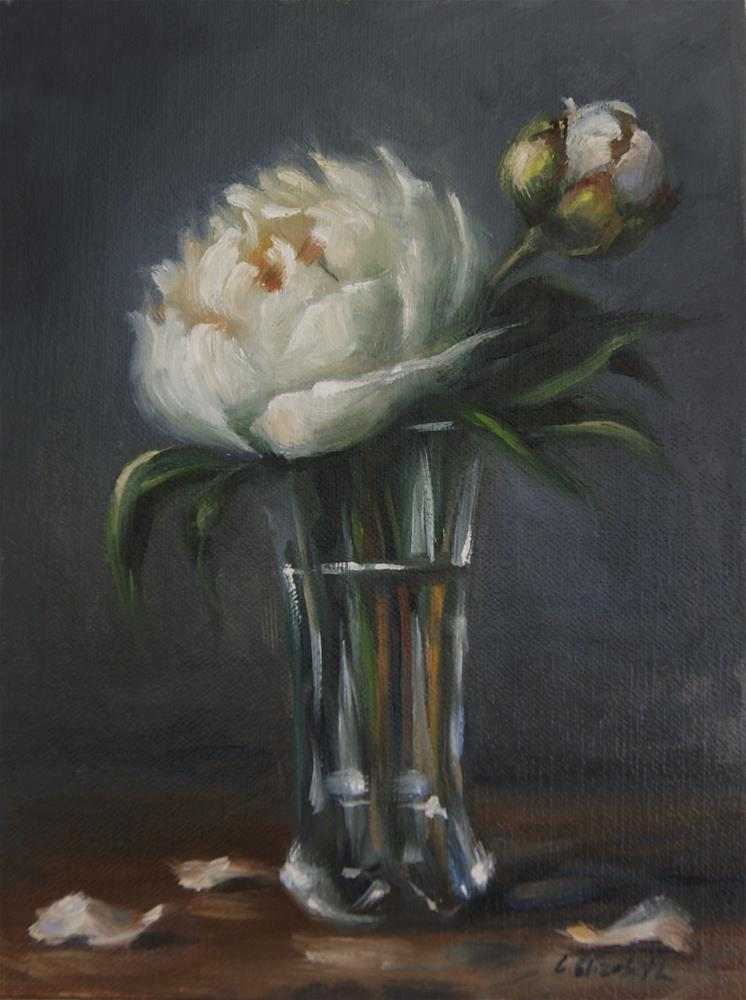 """Still Life with White Peonies in Crystal Vase,  Oil on 6x8 Linen Panel"" original fine art by Carolina Elizabeth"