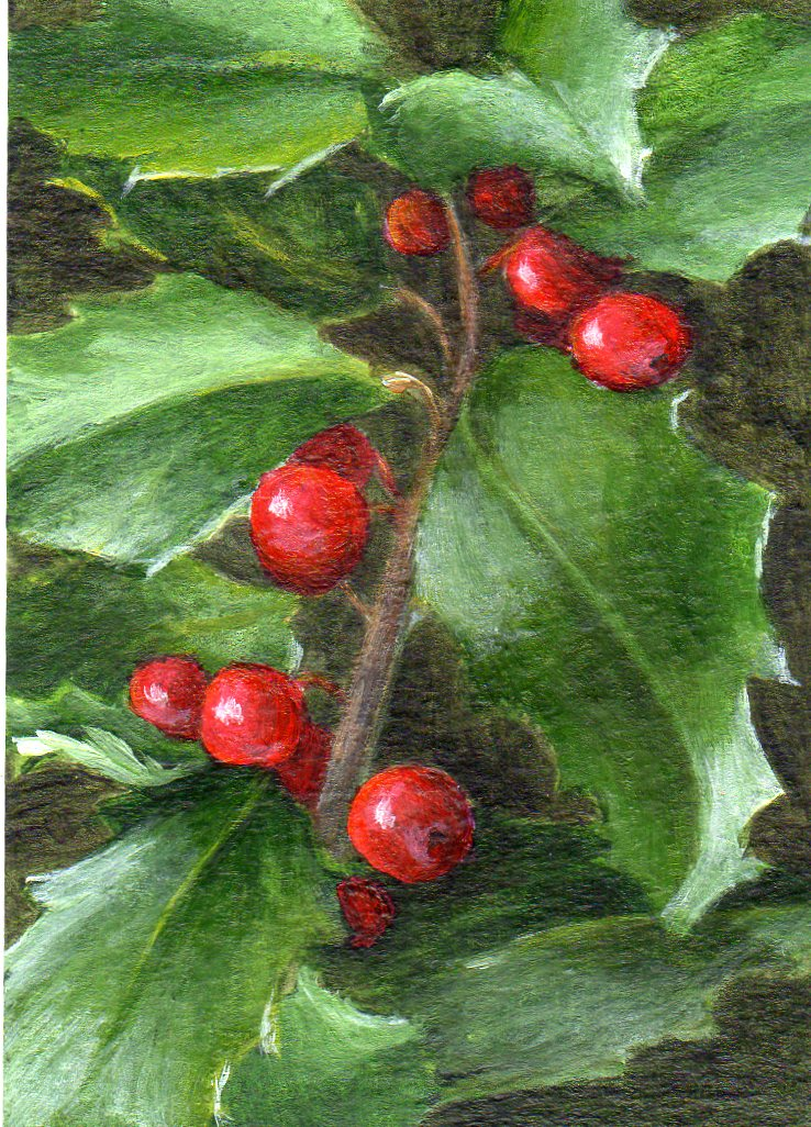 """Holly Holiday"" original fine art by Debbie Shirley"