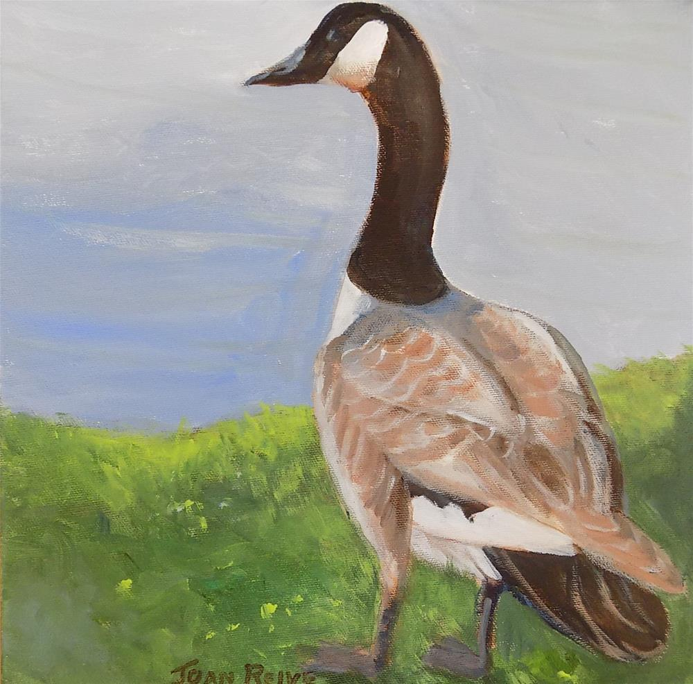 """Canada Goose"" original fine art by Joan Reive"