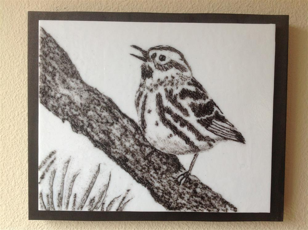 """""""Black and White Warbler"""" original fine art by Calloway Meiners"""