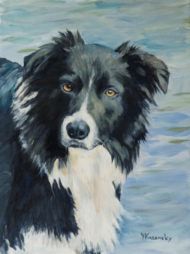 """Border Collie portrait"" original fine art by Yulia Kazansky"