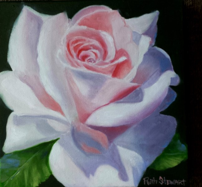 """Pink Promise"" original fine art by Ruth Stewart"