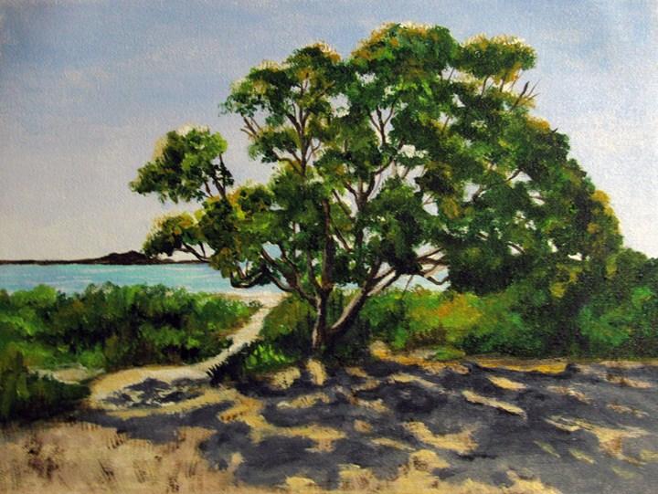 """Morgan Esplanade - Tasmania"" original fine art by Nan Johnson"
