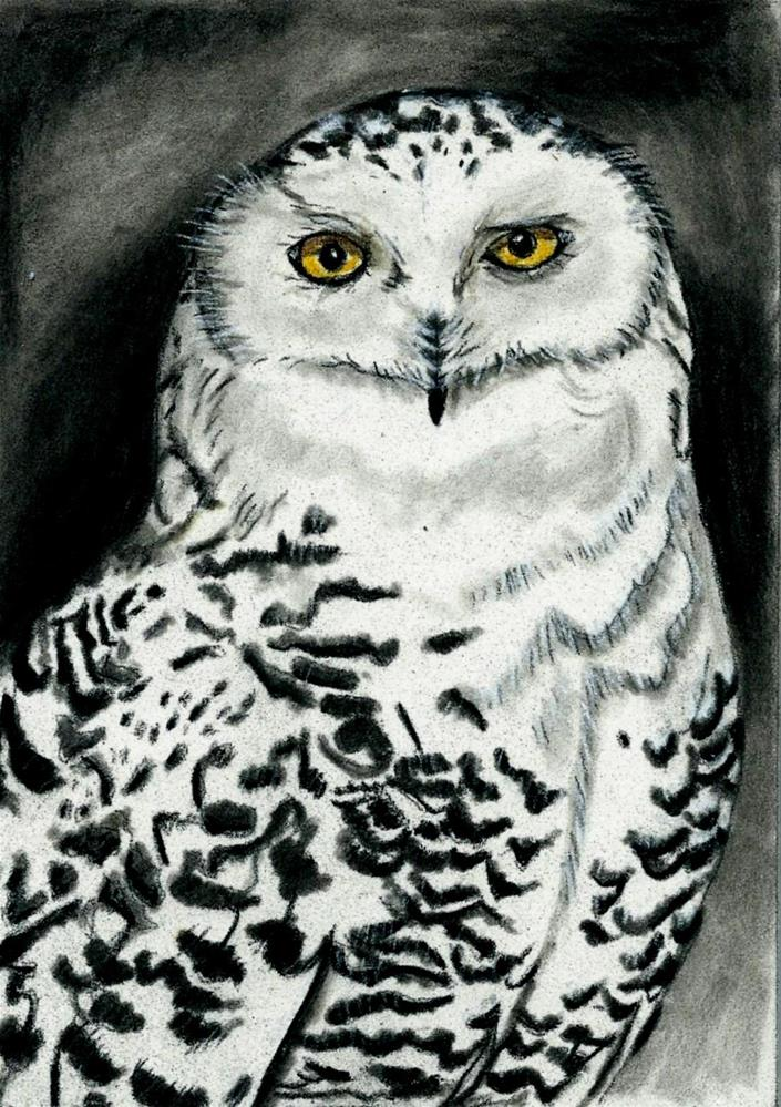 """Snowy Owl"" original fine art by Lisa Wiertel"