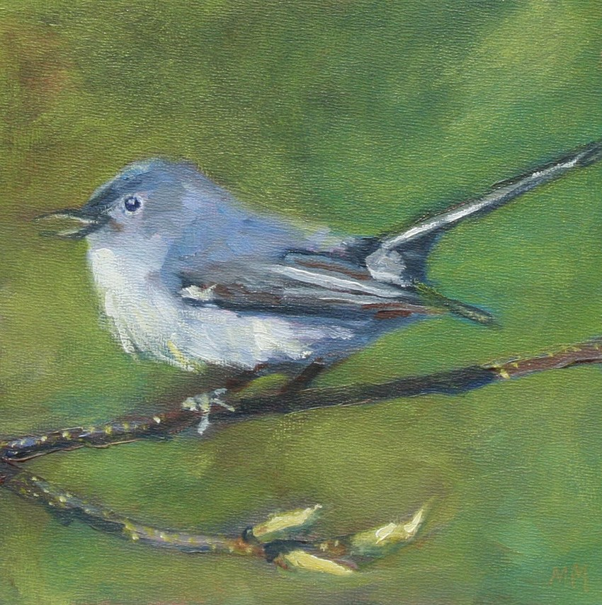 """The Greater Tit"" original fine art by Maria McNitt"