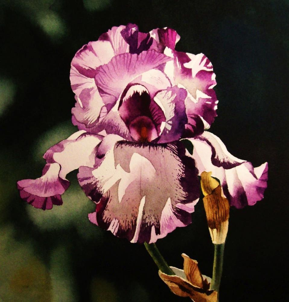 """""""Purple Prince"""" original fine art by Jacqueline Gnott, whs"""