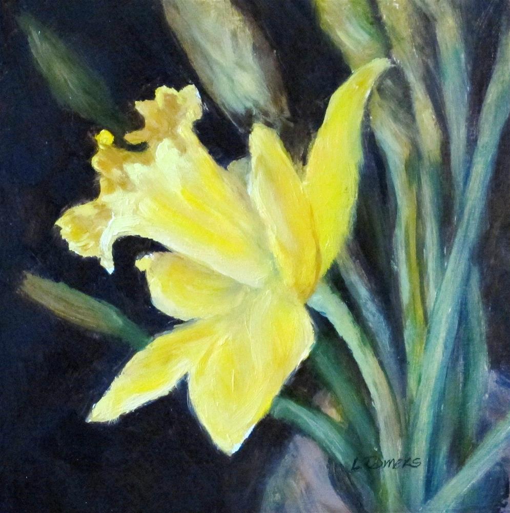 """Daffodil Study"" original fine art by Linda Demers"
