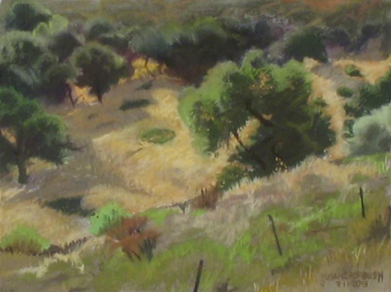 """""""Oak Tree, Walker Ranch"""" original fine art by Susan Z. Forbush"""