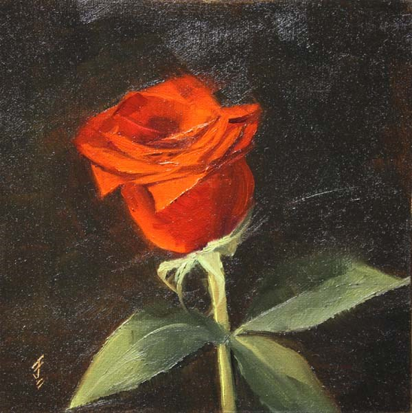 """Valentine Rose"" original fine art by Jane Frederick"