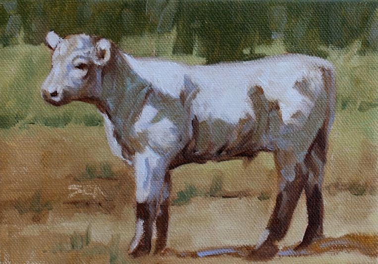 """White Calf"" original fine art by Susan Ashmore"
