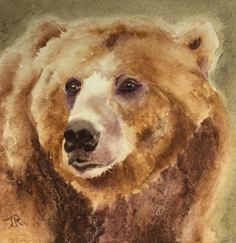 """Kodiak Brown Bear"" original fine art by June Rollins"