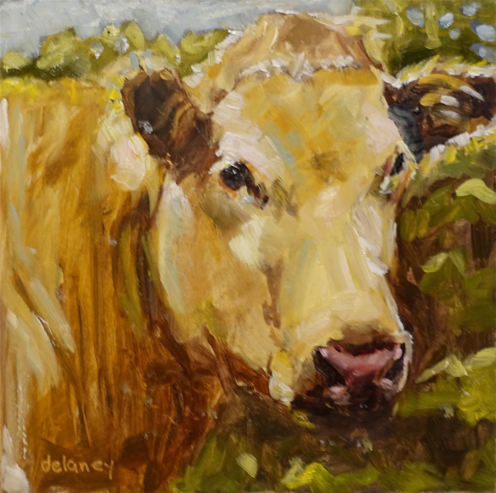 """""""Cow 158 HEART BREAKER"""" original fine art by Jean Delaney"""