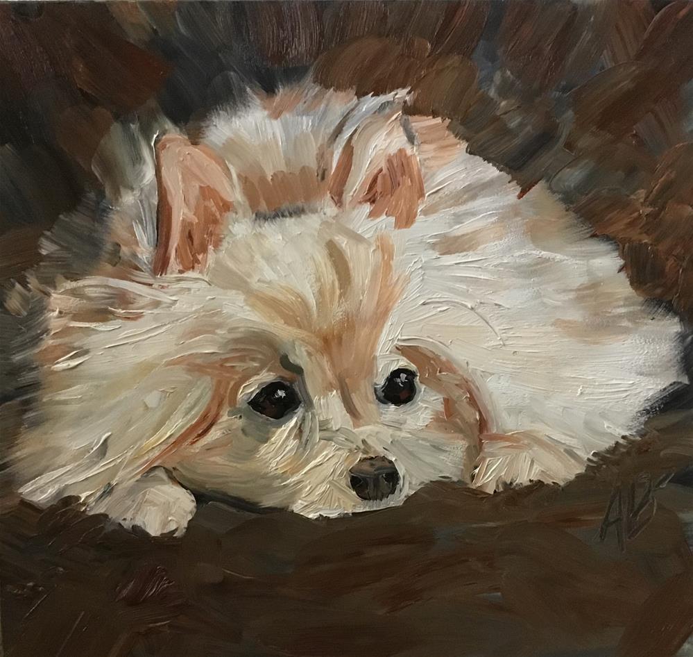 """""""Pomeranian"""" original fine art by Annette Balesteri"""