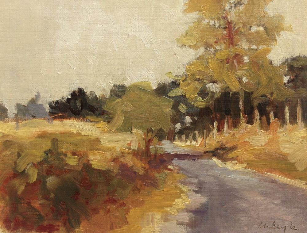 """Countryside road in sunset"" original fine art by Christine Bayle"