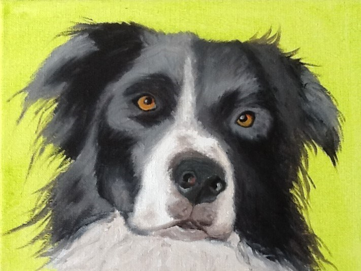 """Border collie"" original fine art by Conny van Leeuwen"