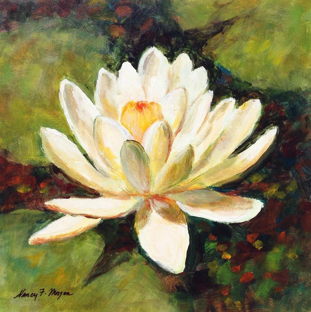 """""""White Water Lily"""" original fine art by Nancy F. Morgan"""