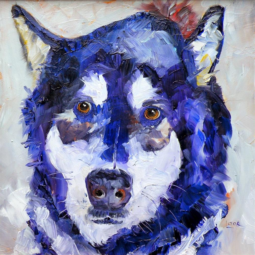 """PIERRE 31/100 OF 100 PET PORTRAITS IN 100 DAYS © SAUNDRA LANE GALLOWAY"" original fine art by Saundra Lane Galloway"