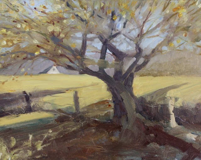 """The Old Apple Tree"" original fine art by Robin Weiss"