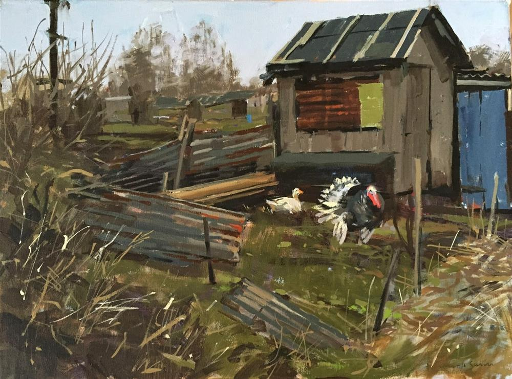"""Turkey at the allotments"" original fine art by Haidee-Jo Summers"