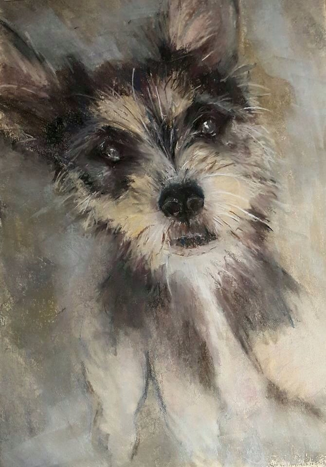 """Scruff love"" original fine art by Rentia Coetzee"