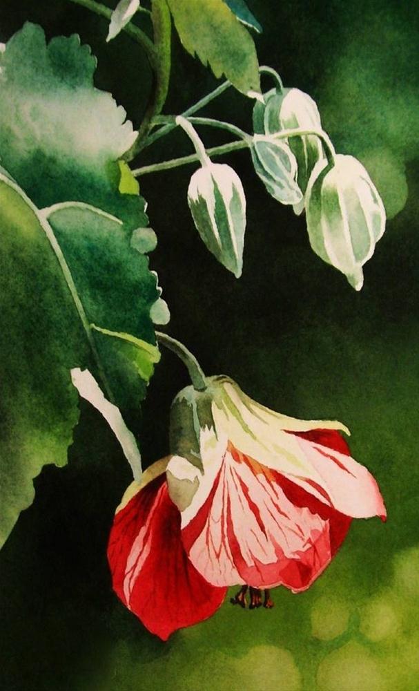 """Chinese Lantern"" original fine art by Jacqueline Gnott, whs"
