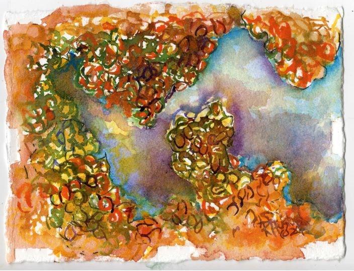 """Carolina Mosquito Fern...Azolla caroliniana"" original fine art by Richard Huston"
