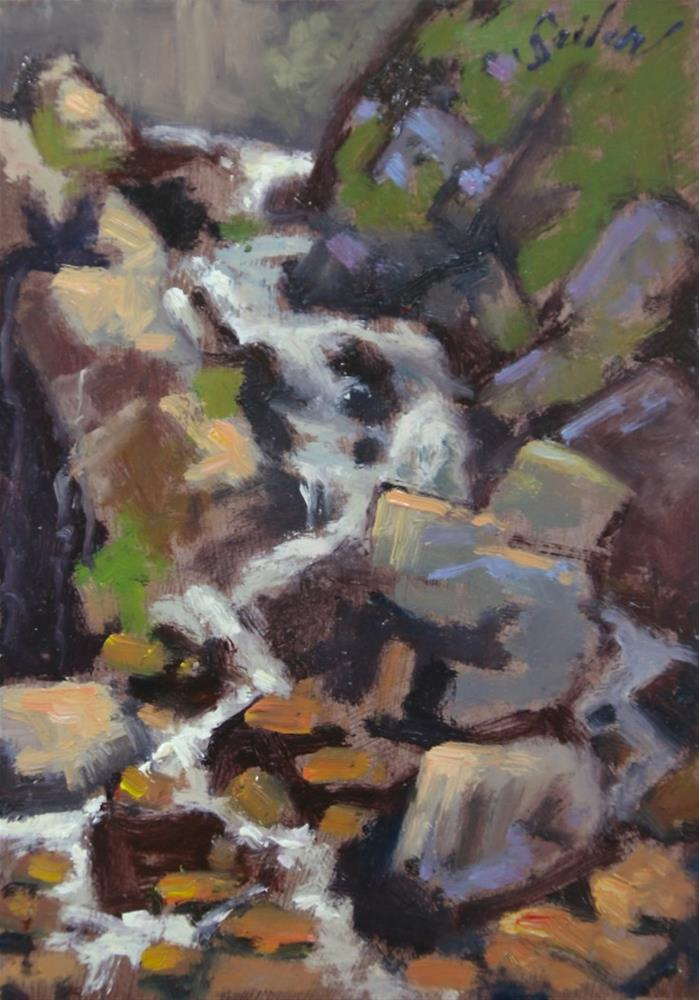 """Study of Fumee Falls"" original fine art by Larry Seiler"
