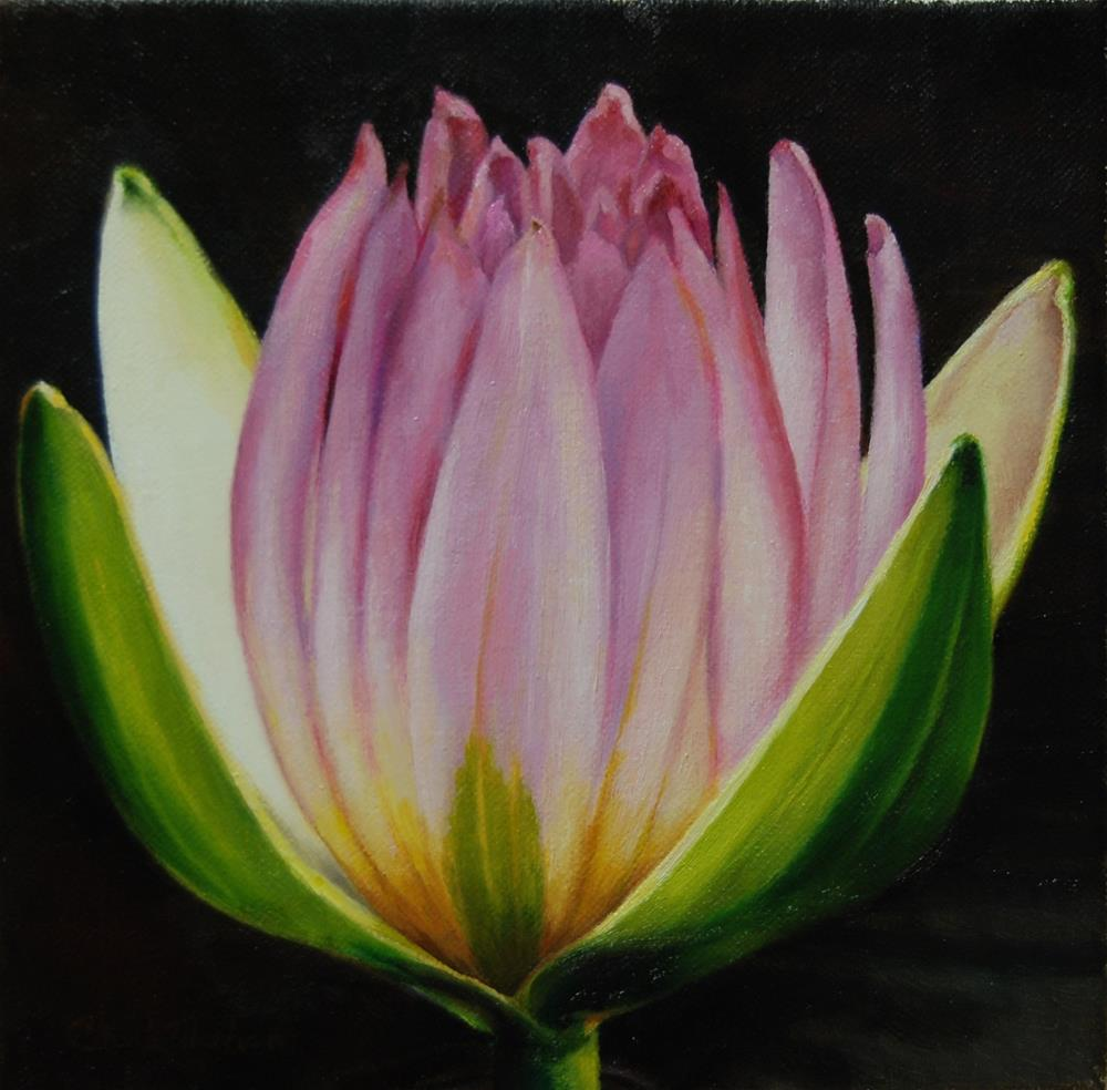 """Lotus"" original fine art by Cheryl Meehan"