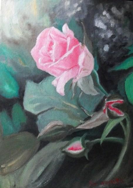 """Pink rose"" original fine art by Konstantia Karletsa"
