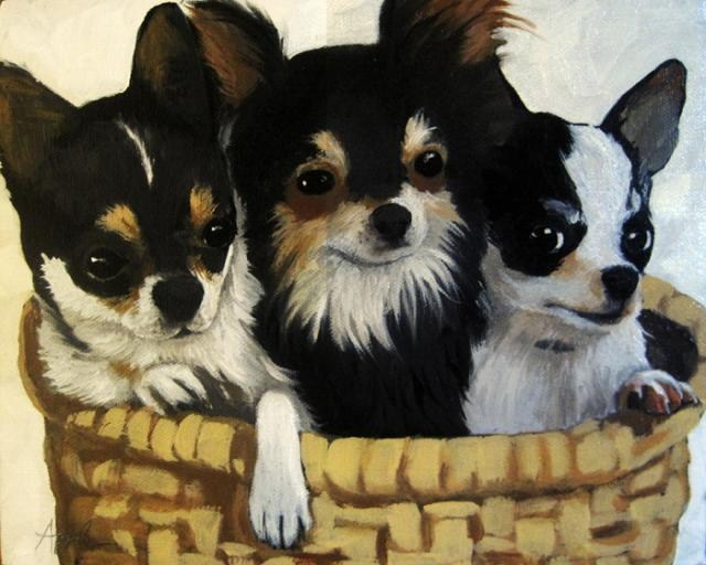 """Tres Amigos Chihahua dog animal portrait"" original fine art by Linda Apple"