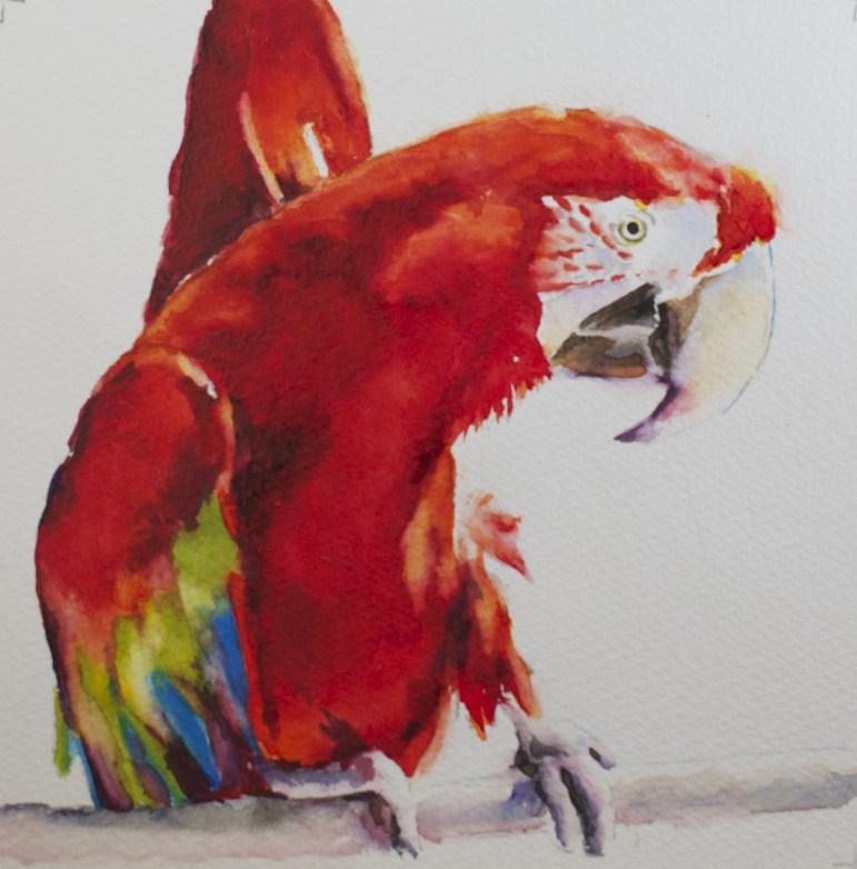 """""""Polly's Dance"""" original fine art by Sue Churchgrant"""