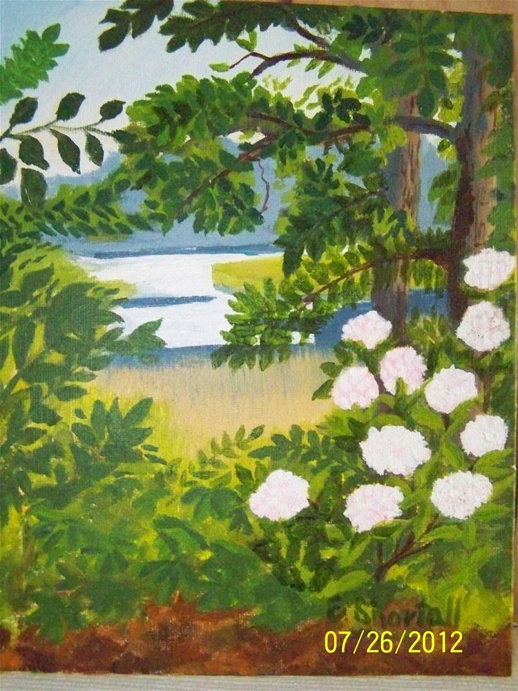 """""""Wildwoods Flowers"""" original fine art by Elaine Shortall"""