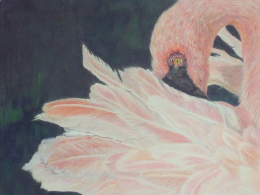 """Pink Ruffles"" original fine art by Nelvia  McGrath"