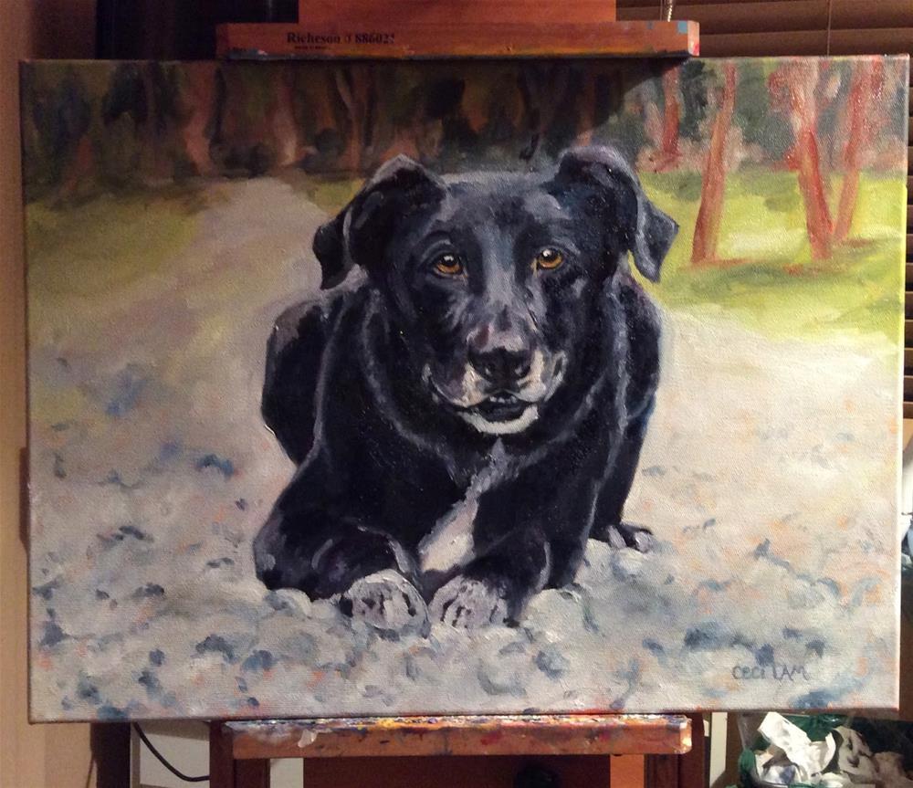 """Connor commissioned pet portrait"" original fine art by Ceci Lam"