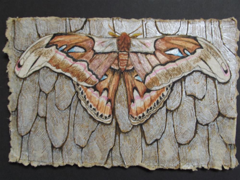 """Atlas"" original fine art by wanda sigafus"