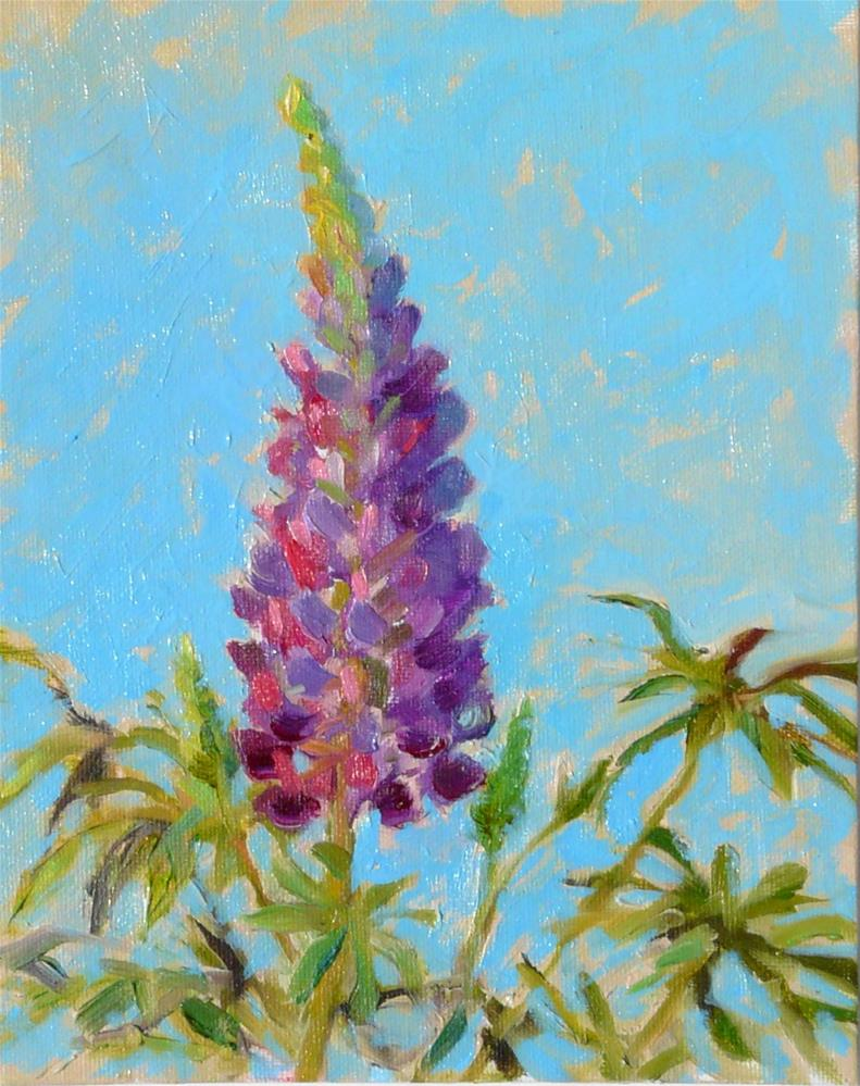 """Lupin Plant,still life,oil on canvas,10x8,price$200"" original fine art by Joy Olney"